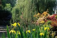 Asisbiz Travel to Claude Monet Chateau garden in Giverny France 25