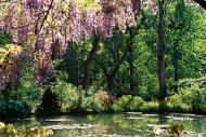 Asisbiz Travel to Claude Monet Chateau garden in Giverny France 26