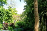 Asisbiz Travel to Claude Monet Chateau garden in Giverny France 27