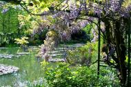 Asisbiz Travel to Claude Monet Water Lily Pond in Giverny France 03