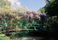 Asisbiz Travel to Claude Monet Water Lily Pond in Giverny France Japanese bridge 07