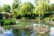 Asisbiz Travel to Claude Monet Water Lily Pond in Giverny France weeping willow 03