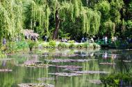 Asisbiz Travel to Claude Monet Water Lily Pond in Giverny France weeping willow 04