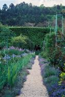 Asisbiz Travel to Claude Monet home or Chateau garden pathways in Giverny France 01