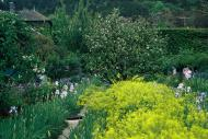 Asisbiz Travel to Claude Monet home or Chateau garden pathways in Giverny France 02