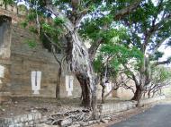 Asisbiz Madurai Alagar Kovil Temple The Garudar and Hanumar 2 Entrance 03