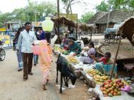 Asisbiz Madurai Alagar Kovil Temple fruit sellers India May 2004 03