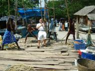 Asisbiz Chinese fishing nets Cheena vala of Fort Kochi Fort Cochin India May 2004 16