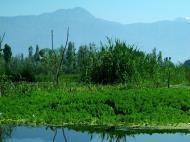 Asisbiz Kashmir Srinagar Dal lake panoramic views India India Apr 2004 076
