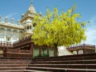 Asisbiz Rajasthan Jodhpur Jaswant Thada India Apr 2004 04