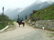 Asisbiz Kashmir Pahalgam Valley Treking by mountain pony India Apr 2004 001