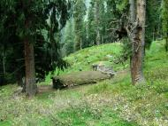 Asisbiz Kashmir Pahalgam Valley Treking by mountain pony India Apr 2004 007