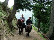 Asisbiz Kashmir Pahalgam Valley Treking by mountain pony India Apr 2004 008