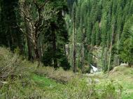 Asisbiz Kashmir Pahalgam Valley Treking by mountain pony India Apr 2004 009