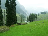 Asisbiz Kashmir Pahalgam Valley Treking by mountain pony India Apr 2004 015