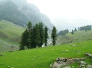 Asisbiz Kashmir Pahalgam Valley Treking by mountain pony India Apr 2004 016