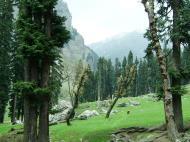 Asisbiz Kashmir Pahalgam Valley Treking by mountain pony India Apr 2004 020