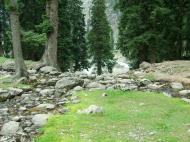 Asisbiz Kashmir Pahalgam Valley Treking by mountain pony India Apr 2004 031