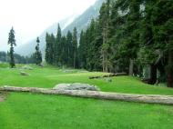 Asisbiz Kashmir Pahalgam Valley Treking by mountain pony India Apr 2004 034
