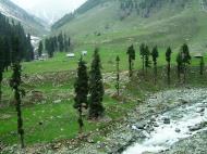 Asisbiz Kashmir Pahalgam Valley Treking by mountain pony India Apr 2004 036