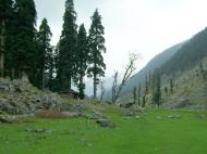 Asisbiz Kashmir Pahalgam Valley Treking by mountain pony India Apr 2004 039