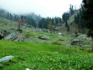 Asisbiz Kashmir Pahalgam Valley Treking by mountain pony India Apr 2004 053
