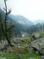 Asisbiz Kashmir Pahalgam Valley Treking by mountain pony India Apr 2004 055