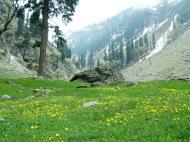 Asisbiz Kashmir Pahalgam Valley Treking by mountain pony India Apr 2004 064