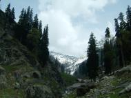 Asisbiz Kashmir Pahalgam Valley Treking by mountain pony India Apr 2004 068