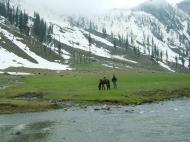 Asisbiz Kashmir Pahalgam Valley Treking by mountain pony India Apr 2004 080