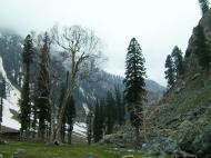 Asisbiz Kashmir Pahalgam Valley Treking by mountain pony India Apr 2004 083