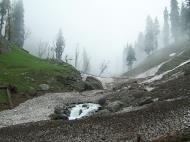 Asisbiz Kashmir Pahalgam Valley Treking by mountain pony India Apr 2004 086