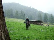 Asisbiz Kashmir Pahalgam Valley Treking by mountain pony India Apr 2004 101