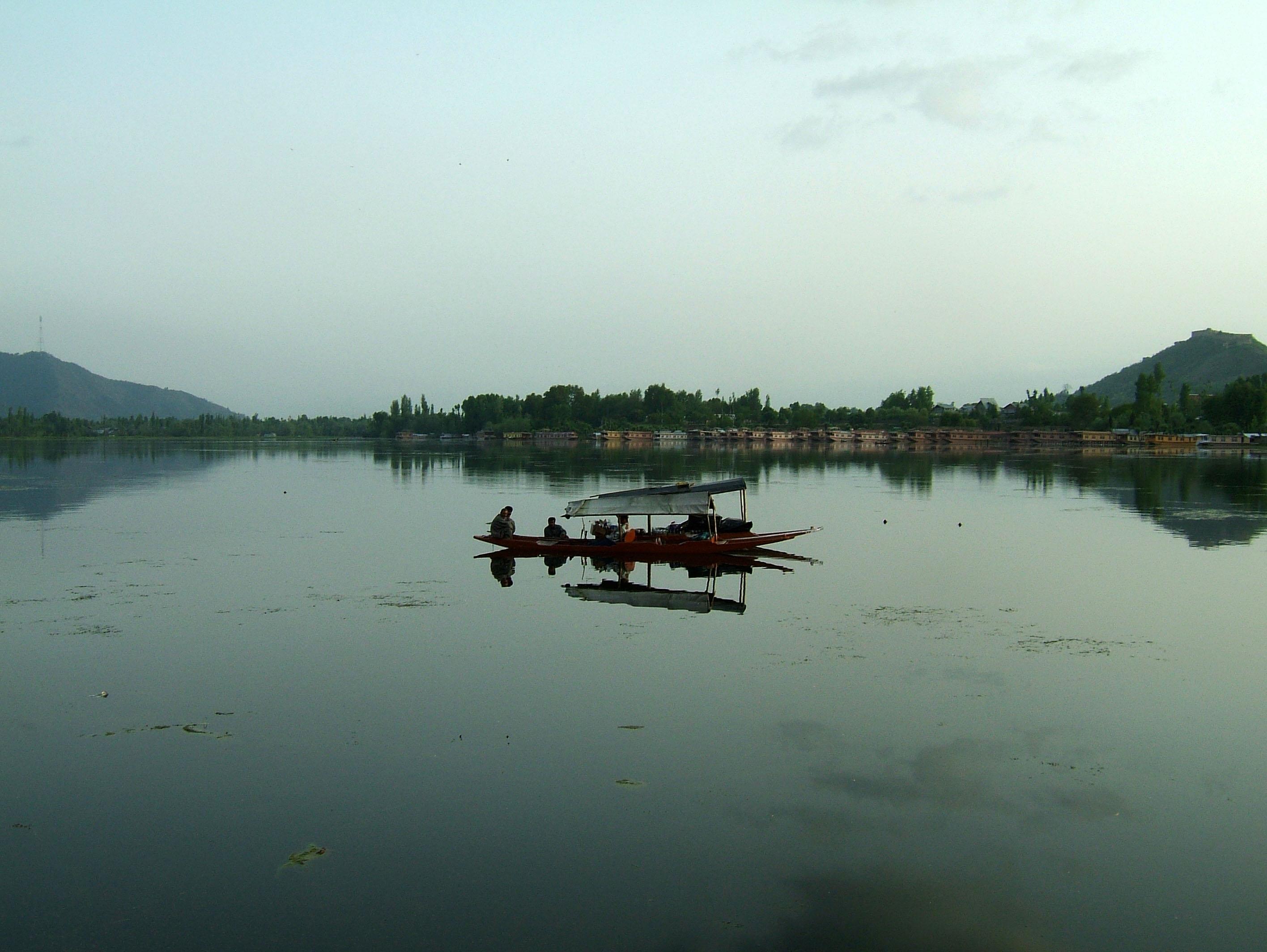 Kashmir Srinagar Shikaras Dal lake India Apr 2004 01