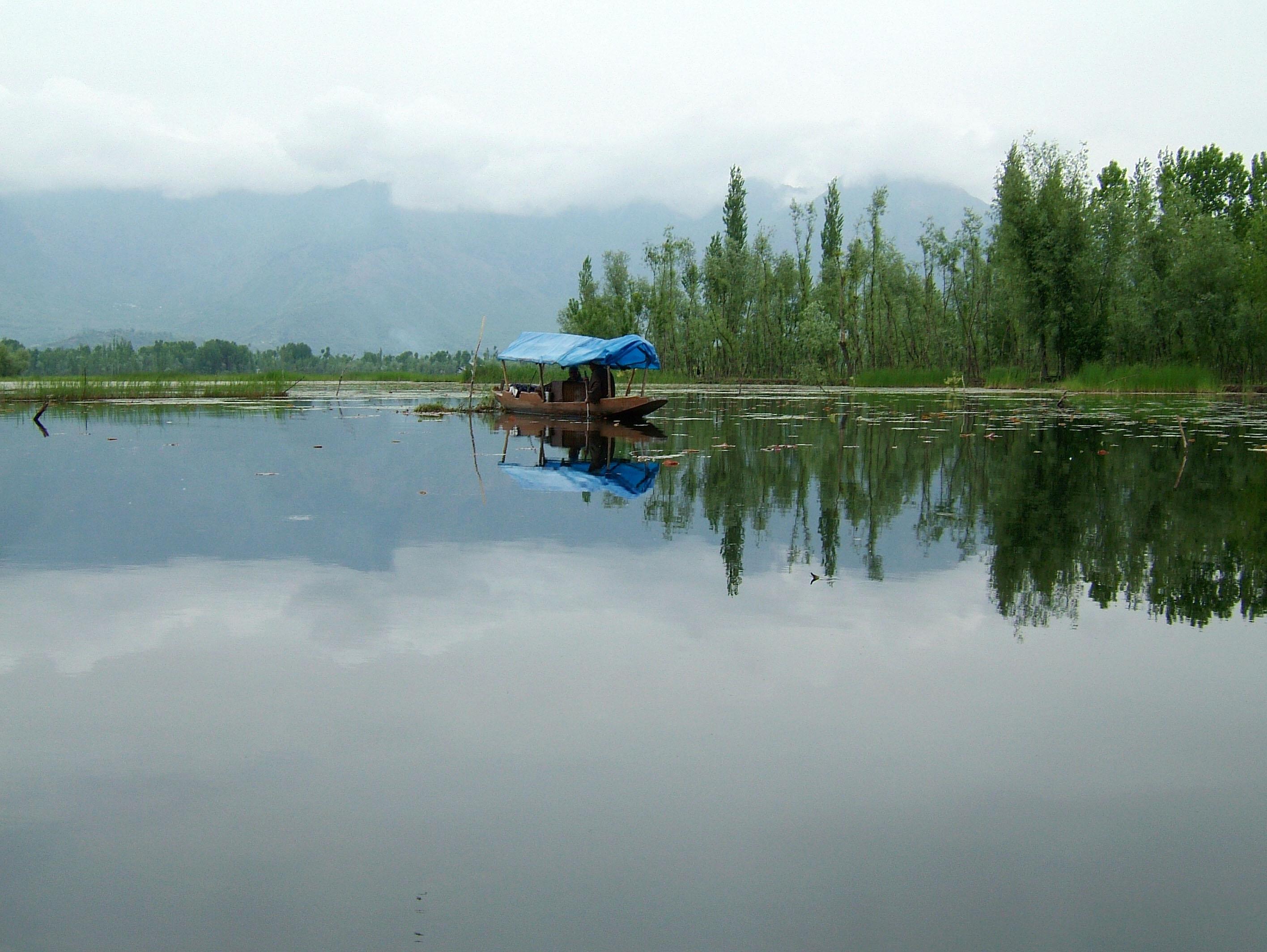 Kashmir Srinagar Shikaras Dal lake India Apr 2004 02