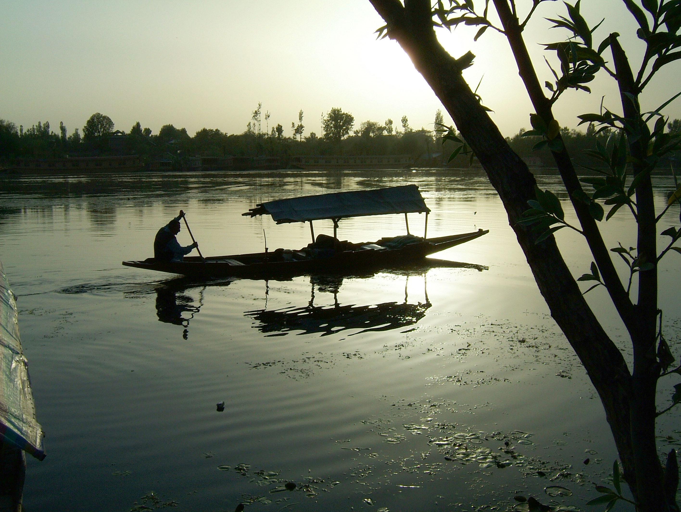 Kashmir Srinagar Shikaras Dal lake India Apr 2004 06