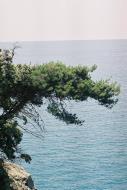Asisbiz Travel photos of the Italian coastline around Rapallo Italy 02