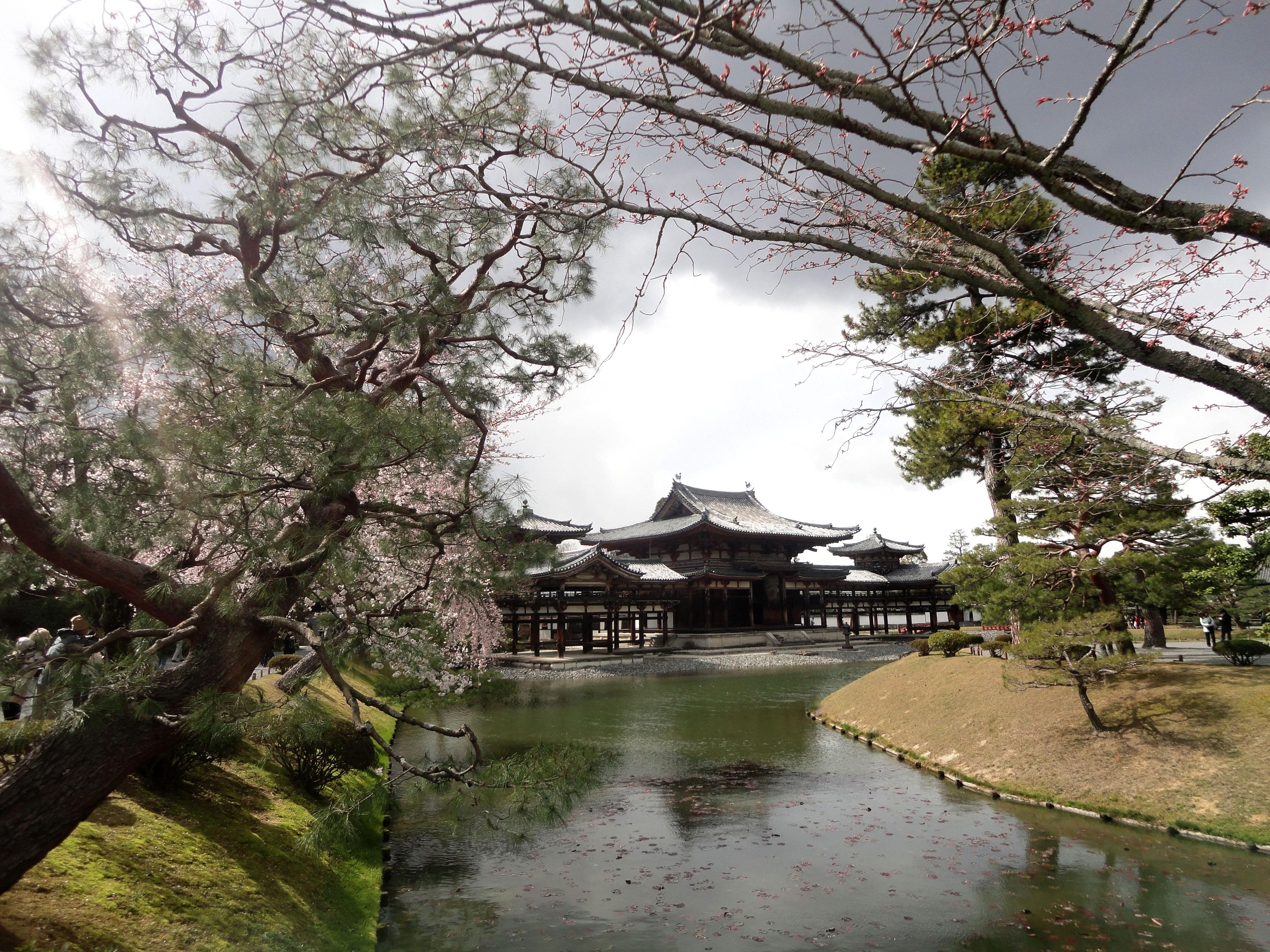 Byodo in temple Jodo shiki garden walkway facing Phoenix Hall Kyoto Japan 04