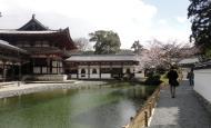 Asisbiz Byodo in Buddhist temple left side entrance Phoenix Hall Kyoto Japan 03