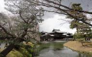 Asisbiz Byodo in temple Jodo shiki garden walkway facing Phoenix Hall Kyoto Japan 03