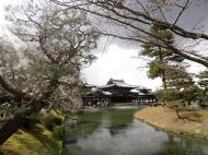 Asisbiz Byodo in temple Jodo shiki garden walkway facing Phoenix Hall Kyoto Japan 04