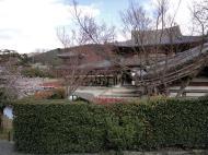 Asisbiz Byodo in temple Phoenix Hall Jodo shiki garden pond side view Japan 03