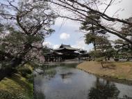 Asisbiz Byodo in temple Phoenix Hall Jodo shiki garden pond views Japan 03