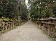 Asisbiz Kasuga taisha Kasuga Grand Shrine pathways leading back to Nara 01