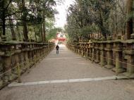 Asisbiz Kasuga taisha Kasuga Grand Shrine pathways leading back to Nara 02