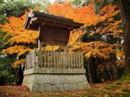 Asisbiz Kinkaku ji Temple 00 information boards Kyoto Japan Nov 2009 01