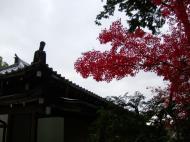 Asisbiz Kinkaku ji Temple 02 the Chinese style Gate Kyoto Japan Nov 2009 05