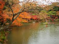Asisbiz Kinkaku ji Temple 05 the pond of Kyoko chi Japan Nov 2009 04