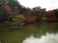 Asisbiz Kinkaku ji Temple 05 the pond of Kyoko chi Japan Nov 2009 07