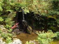 Asisbiz Kinkaku ji Temple 12 the Ryumon Taki waterfall Kyoto Japan Nov 2009 01